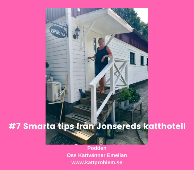 #7 Smarta tips från Jonsereds katthotell